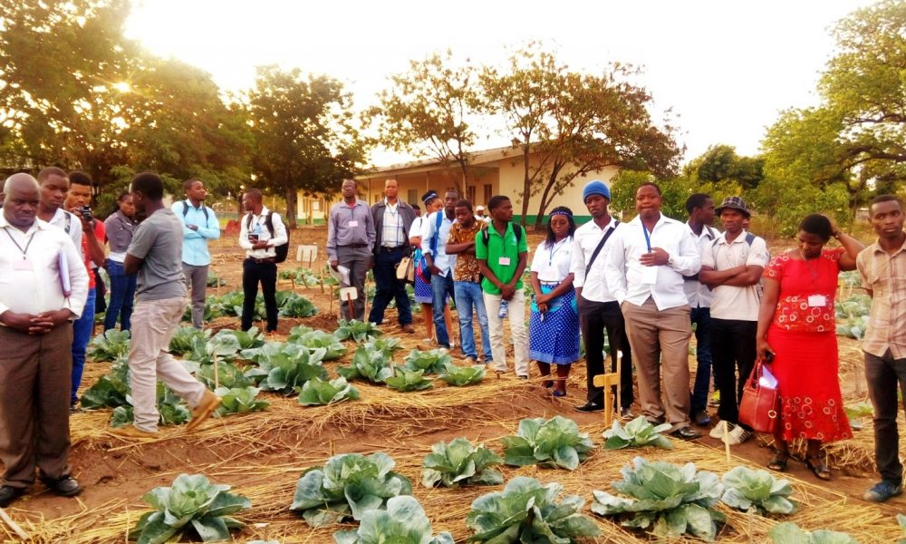 Campus de cultivo da FAGRI (1)